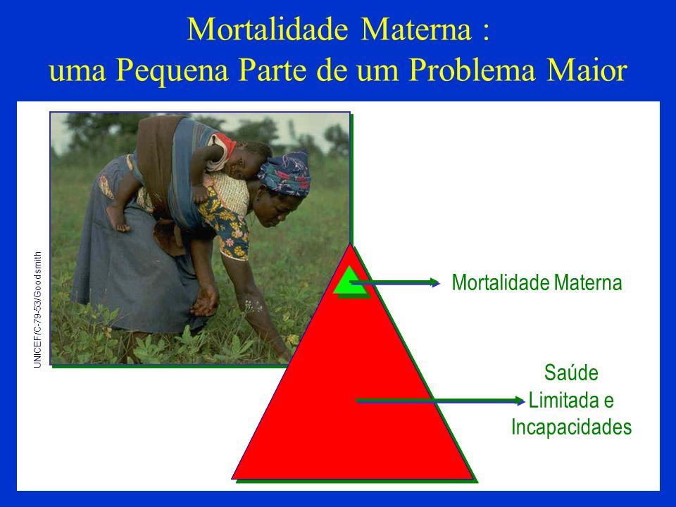 Mortalidade Materna : uma Pequena Parte de um Problema Maior
