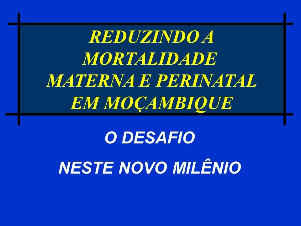 REDUZINDO A MORTALIDADE MATERNA E PERINATAL EM MOÇAMBIQUE