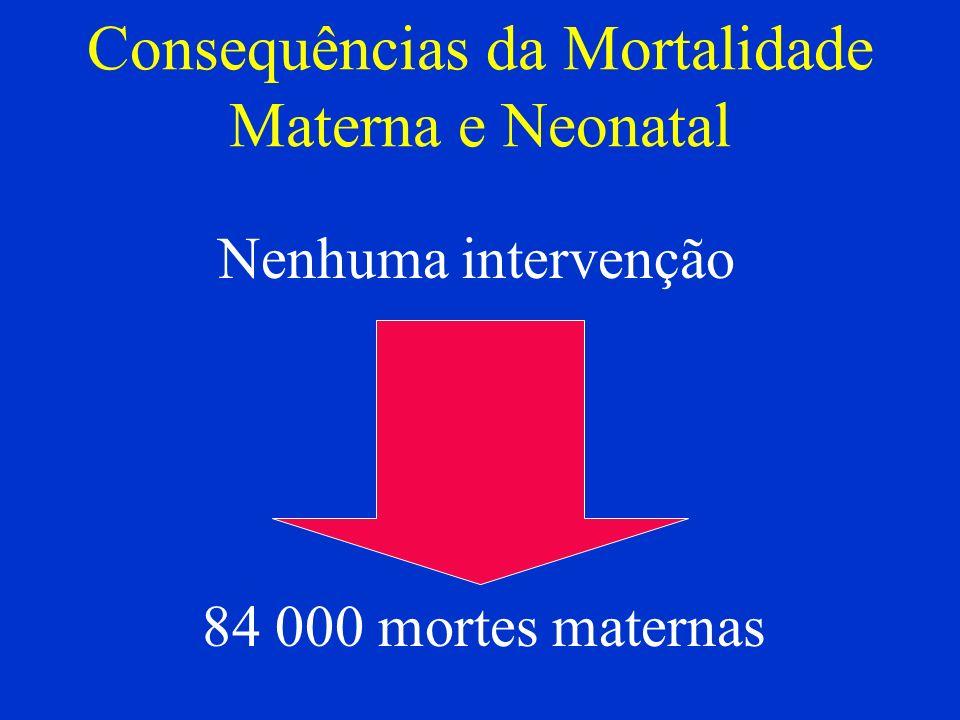 Consequências da Mortalidade Materna e Neonatal
