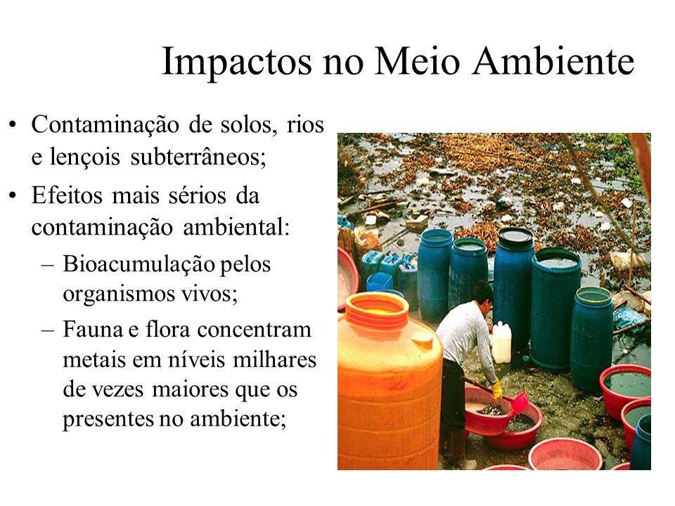 Impactos no Meio Ambiente