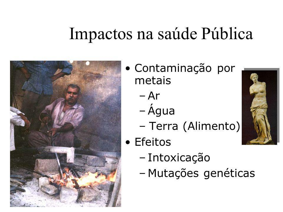 Impactos na saúde Pública