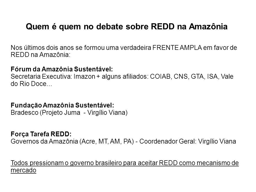 Quem é quem no debate sobre REDD na Amazônia