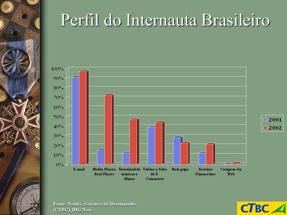 Perfil do Internauta Brasileiro