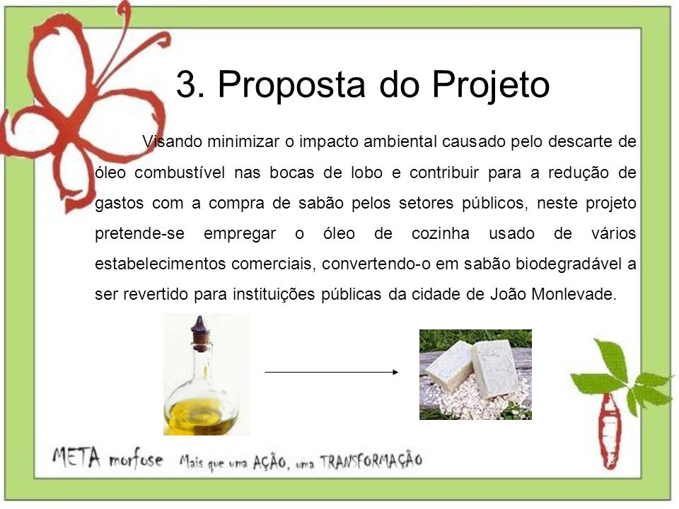 3. Proposta do Projeto