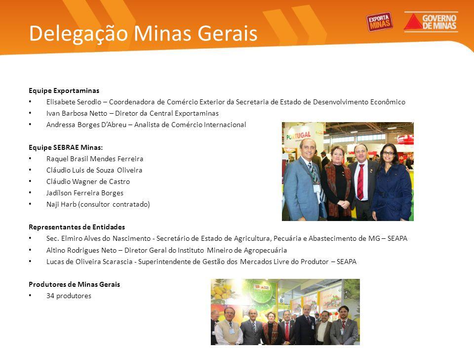 Delegação Minas Gerais