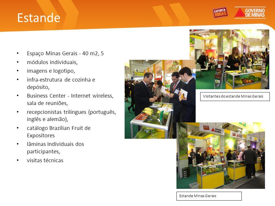 Estande Espaço Minas Gerais - 40 m2, 5 módulos individuais,