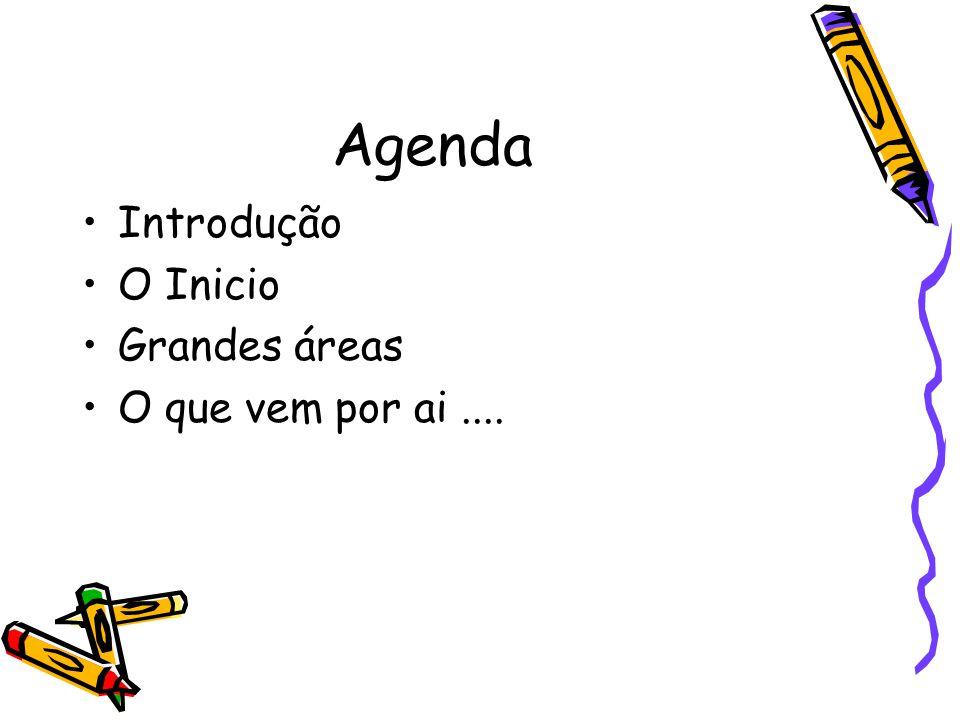 Agenda Introdução O Inicio Grandes áreas O que vem por ai ....