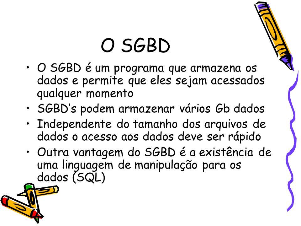 O SGBD O SGBD é um programa que armazena os dados e permite que eles sejam acessados qualquer momento.