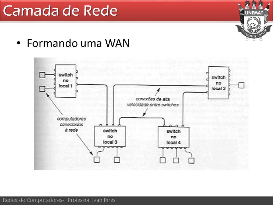 Camada de Rede Formando uma WAN