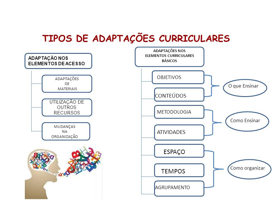 TIPOS DE ADAPTAÇÕES CURRICULARES ELEMENTOS CURRICULARES