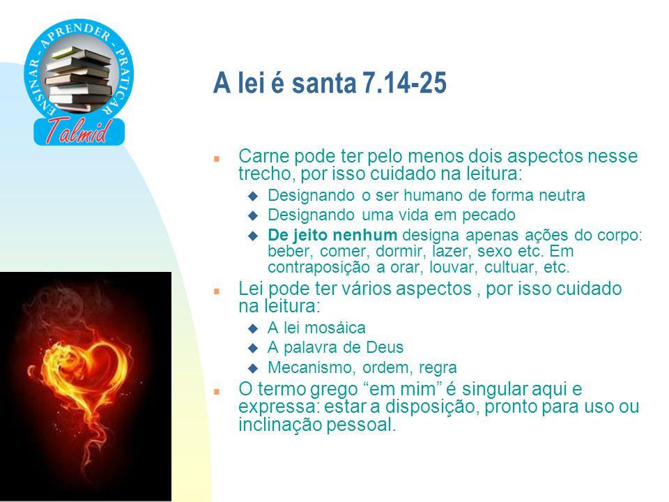A lei é santa 7.14-25 Carne pode ter pelo menos dois aspectos nesse trecho, por isso cuidado na leitura: