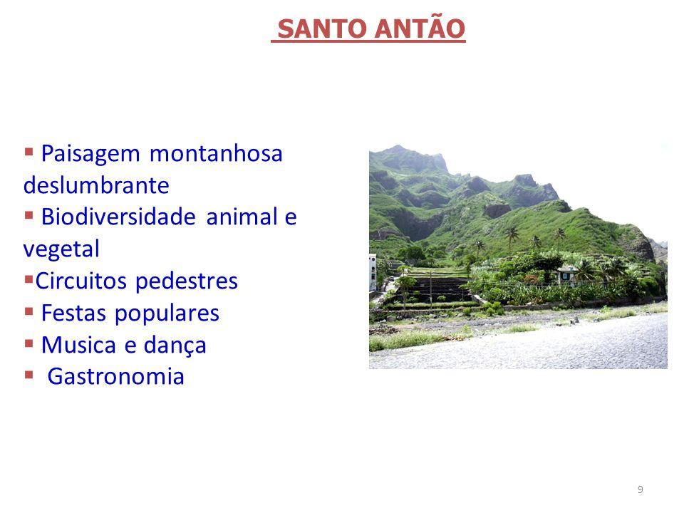 Paisagem montanhosa deslumbrante Biodiversidade animal e vegetal