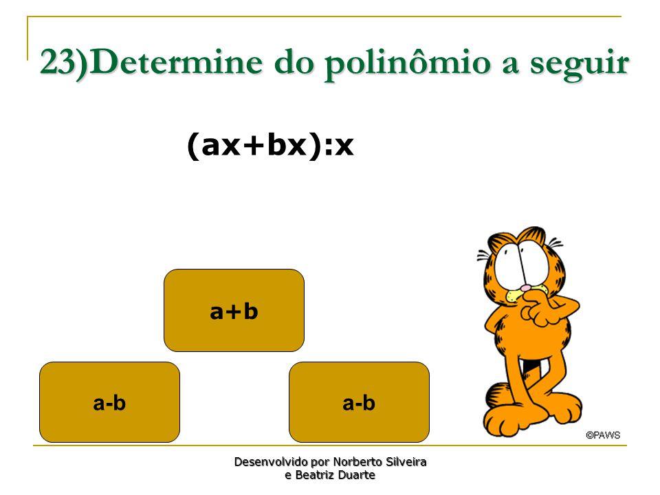 23)Determine do polinômio a seguir
