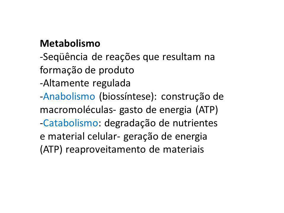 Metabolismo -Seqüência de reações que resultam na formação de produto. -Altamente regulada.
