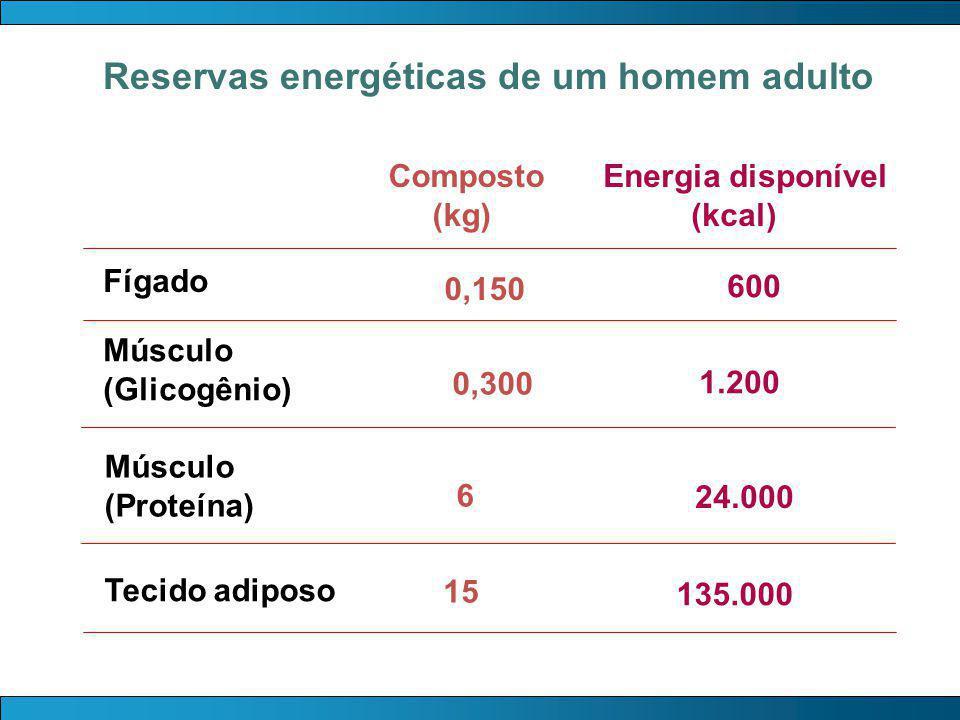 Reservas energéticas de um homem adulto
