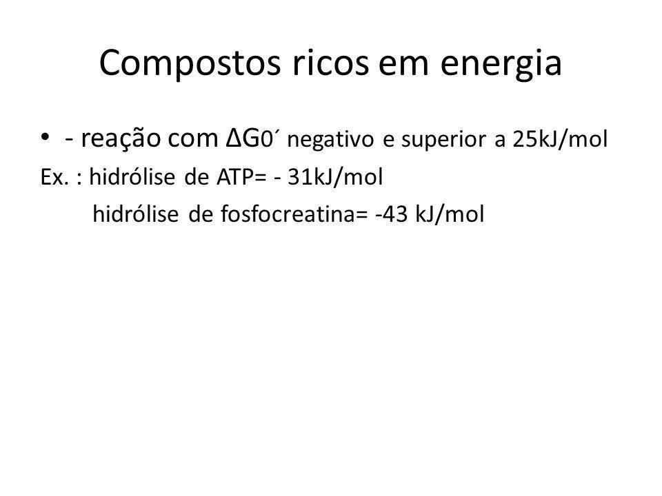 Compostos ricos em energia