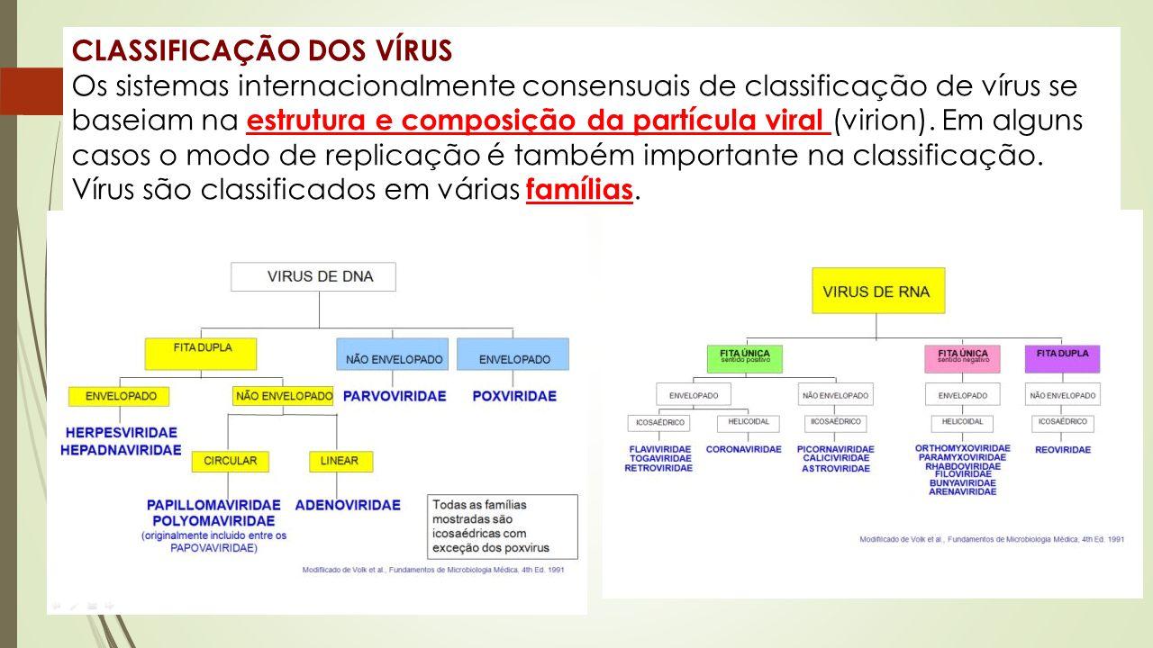 CLASSIFICAÇÃO DOS VÍRUS Os sistemas internacionalmente consensuais de classificação de vírus se baseiam na estrutura e composição da partícula viral (virion).
