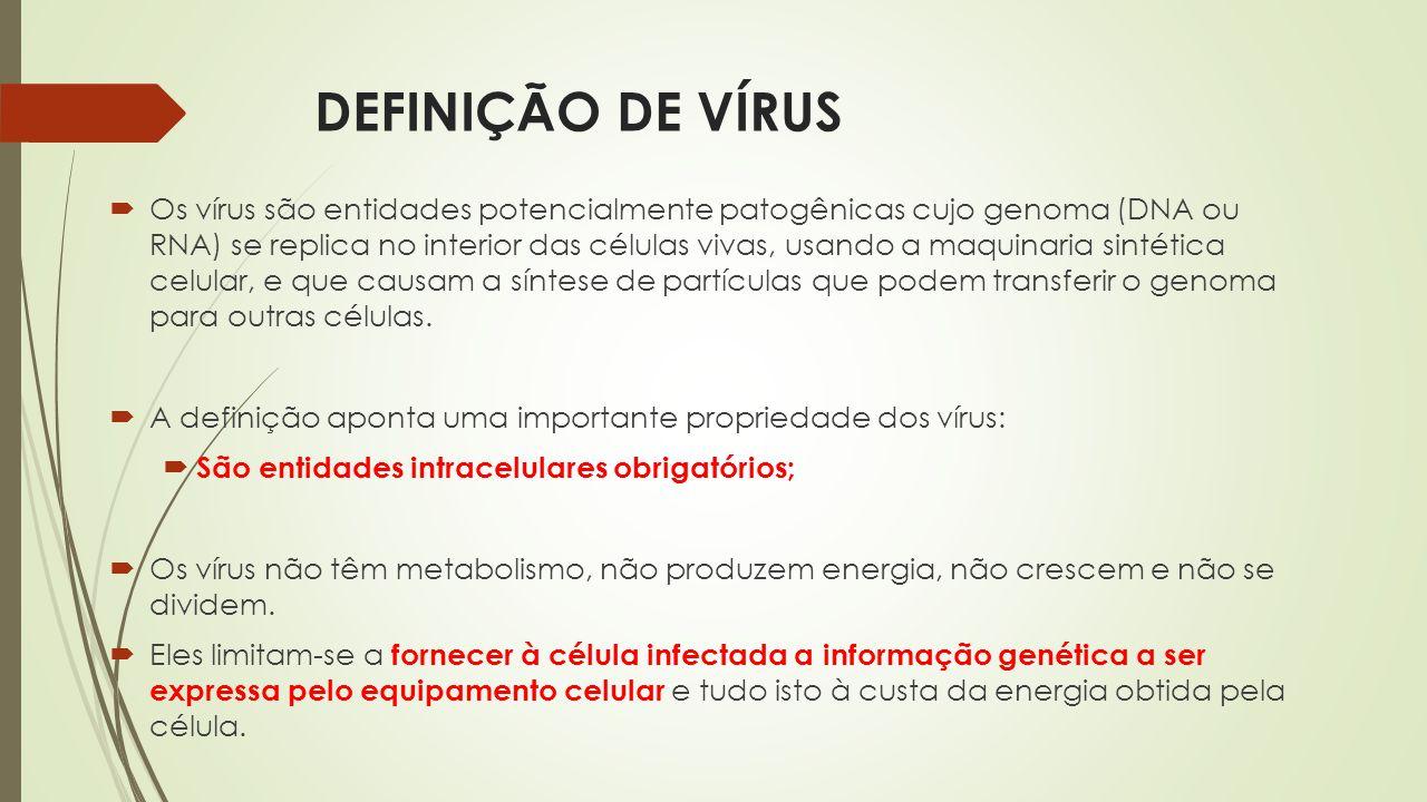 DEFINIÇÃO DE VÍRUS