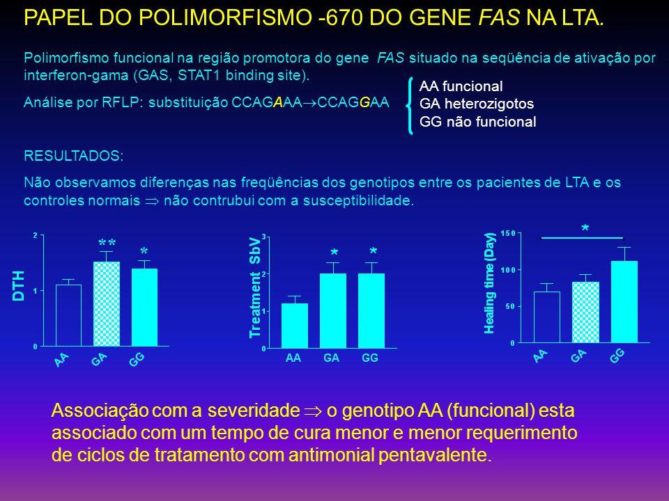 PAPEL DO POLIMORFISMO -670 DO GENE FAS NA LTA.
