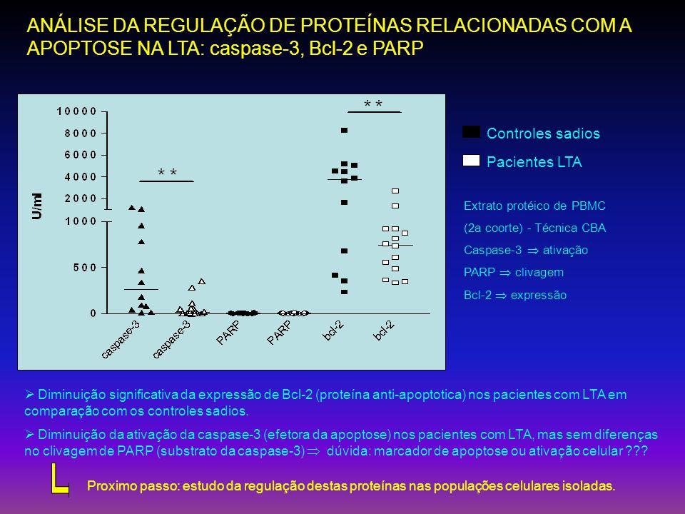 ANÁLISE DA REGULAÇÃO DE PROTEÍNAS RELACIONADAS COM A APOPTOSE NA LTA: caspase-3, Bcl-2 e PARP