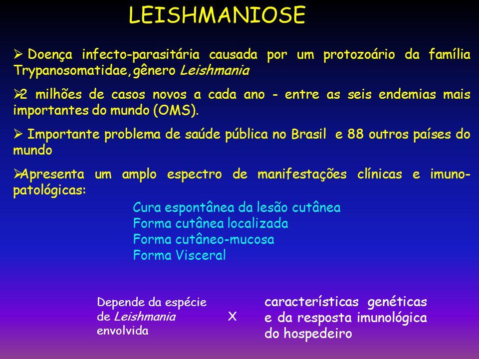 LEISHMANIOSE Doença infecto-parasitária causada por um protozoário da família Trypanosomatidae, gênero Leishmania.