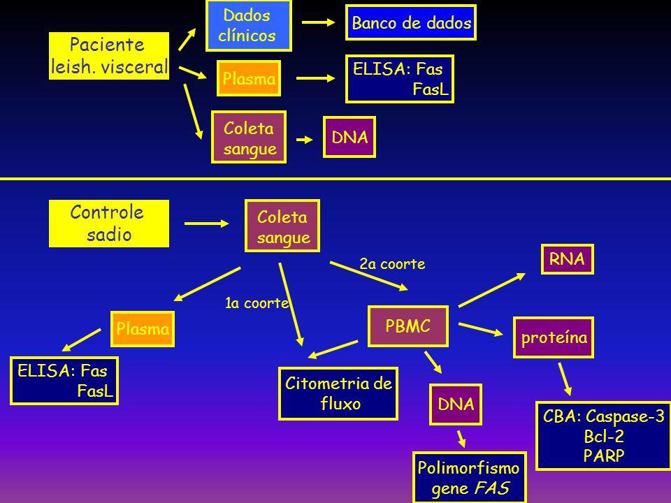 Paciente leish. visceral Controle sadio Dados Banco de dados clínicos