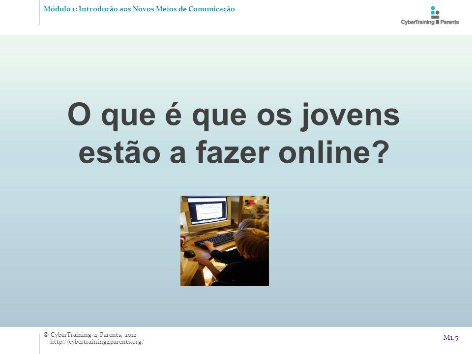 O que é que os jovens estão a fazer online