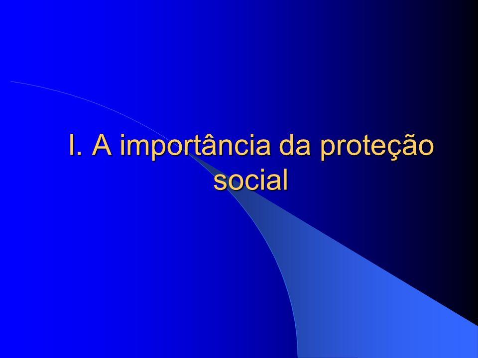 I. A importância da proteção social