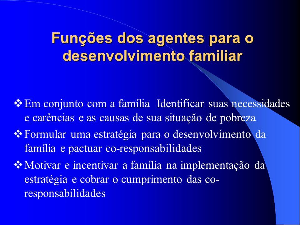 Funções dos agentes para o desenvolvimento familiar