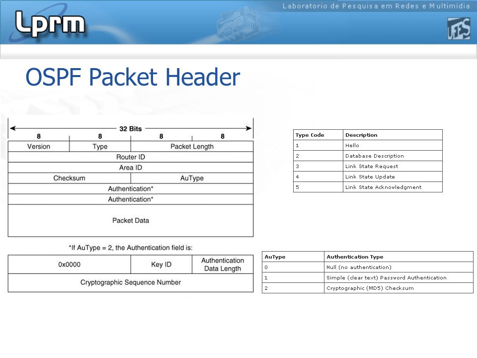 OSPF Packet Header