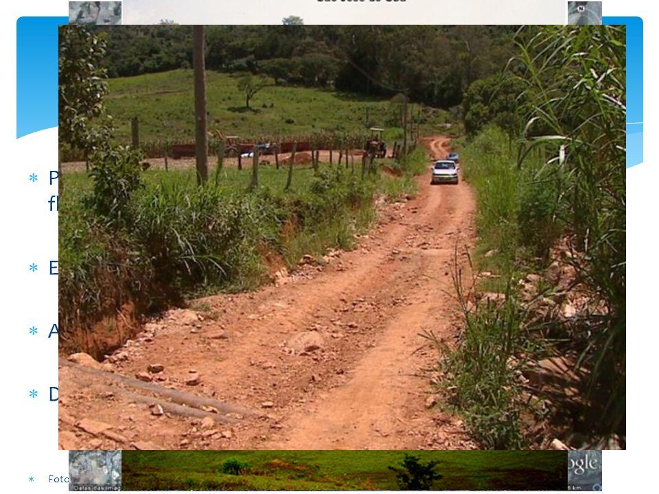 Problemas Pastagens degradadas e fragmentação dos remanescentes florestais. Estradas de terra inadequadas gerando muitos sedimentos.