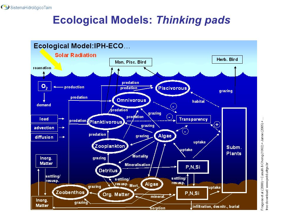 Ecological Models: Thinking pads