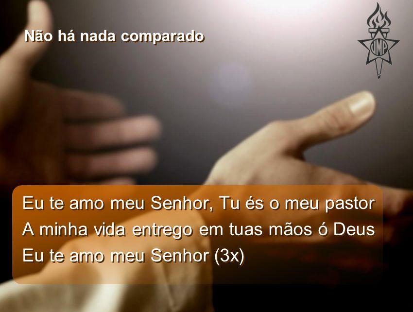 Eu te amo meu Senhor, Tu és o meu pastor