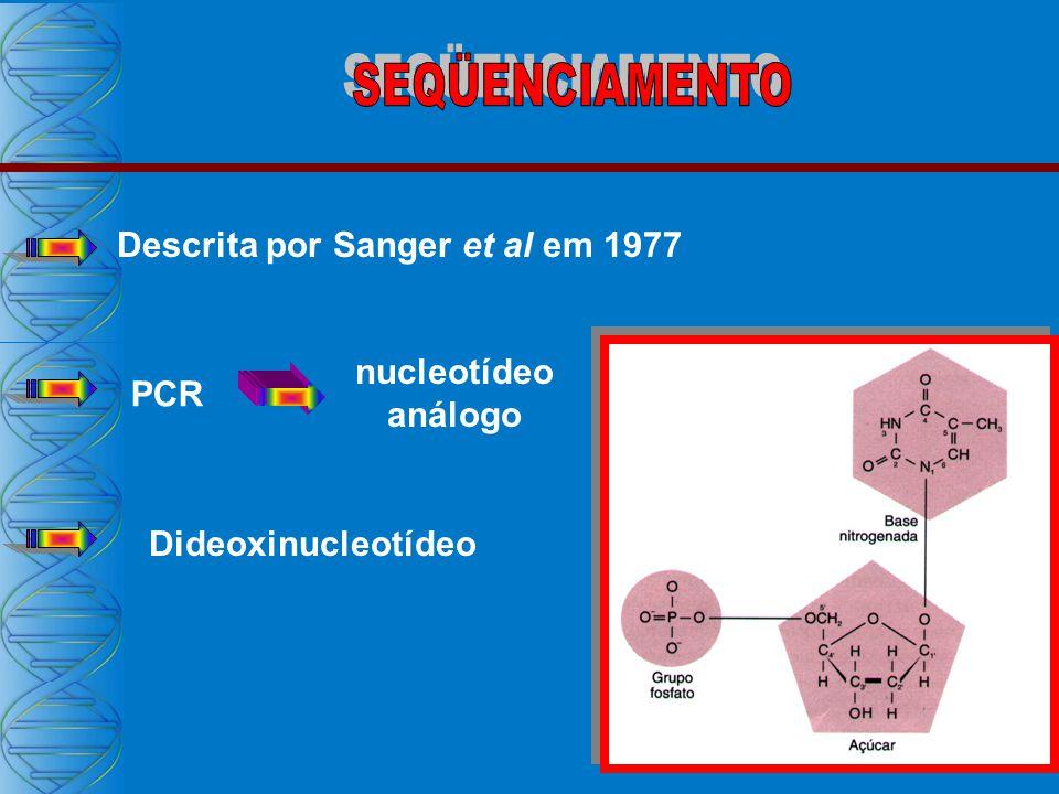 SEQÜENCIAMENTO Descrita por Sanger et al em 1977 nucleotídeo análogo