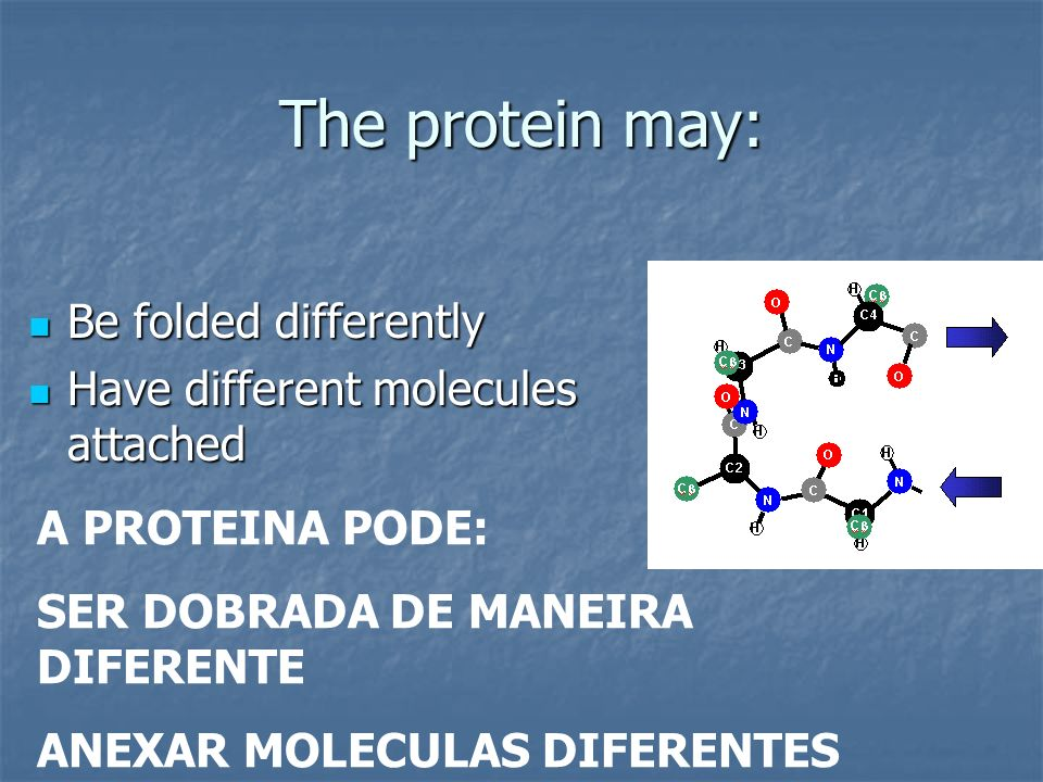 The protein may: Be folded differently