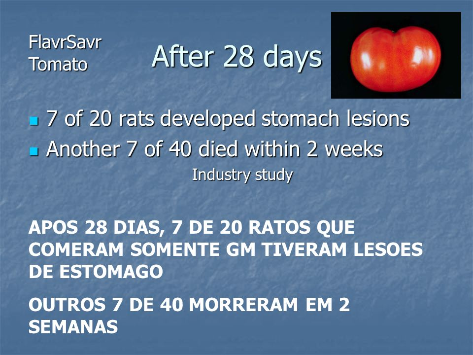 After 28 days 7 of 20 rats developed stomach lesions