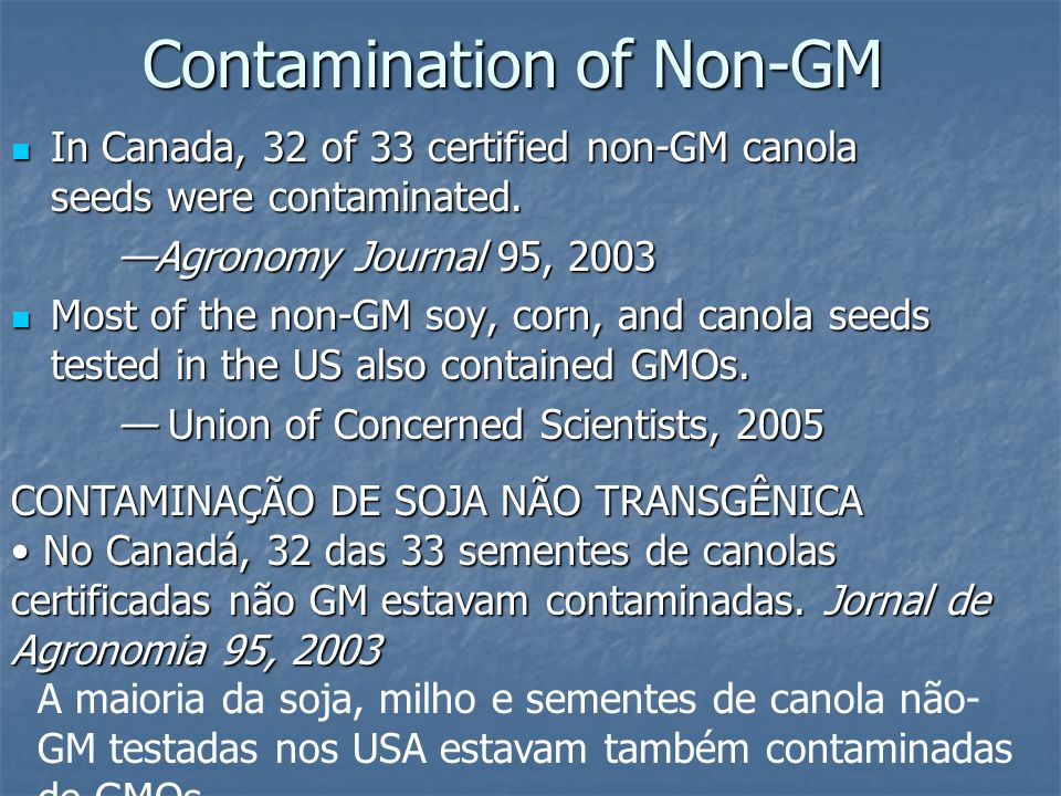 Contamination of Non-GM