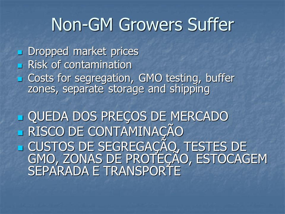 Non-GM Growers Suffer QUEDA DOS PREÇOS DE MERCADO