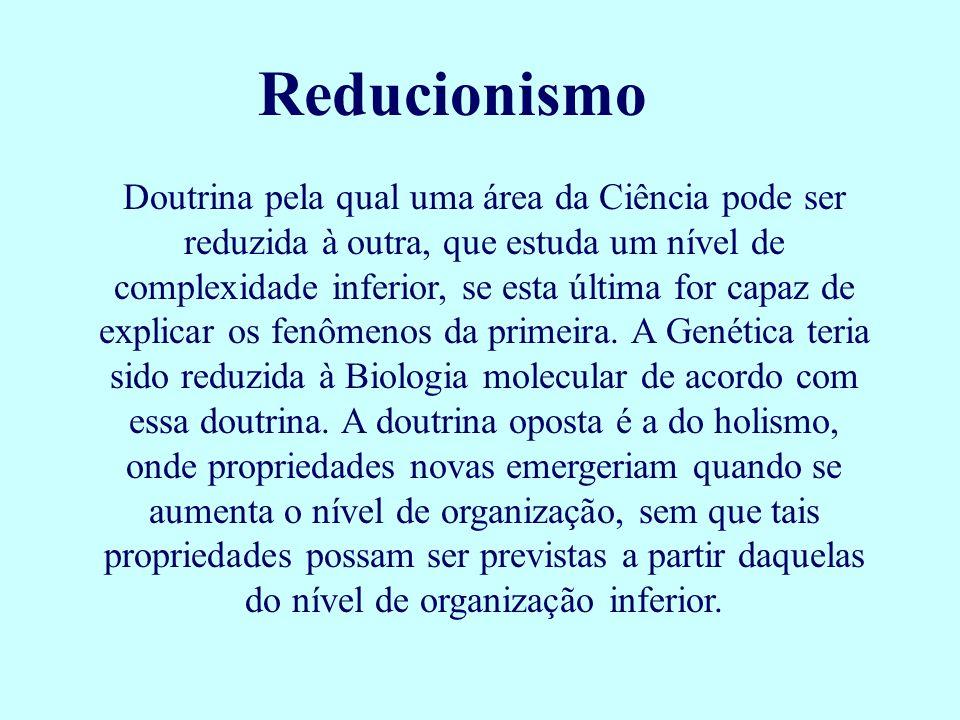 Reducionismo
