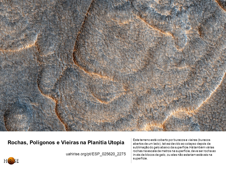 Rochas, Polígonos e Vieiras na Planitia Utopia