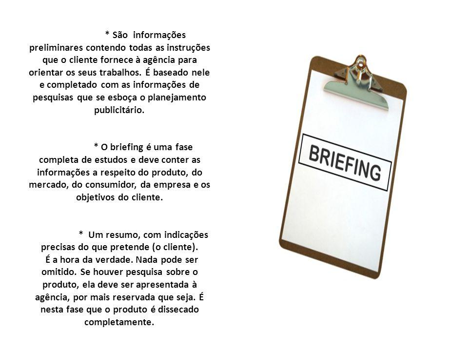* São informações preliminares contendo todas as instruções que o cliente fornece à agência para orientar os seus trabalhos.