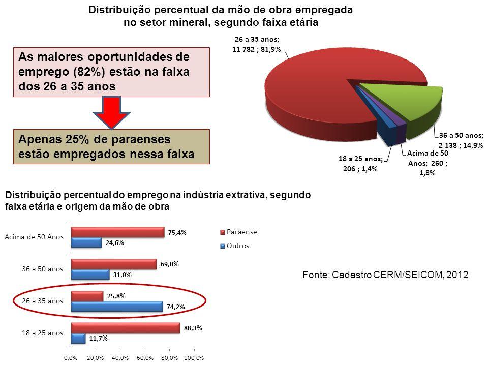 Apenas 25% de paraenses estão empregados nessa faixa