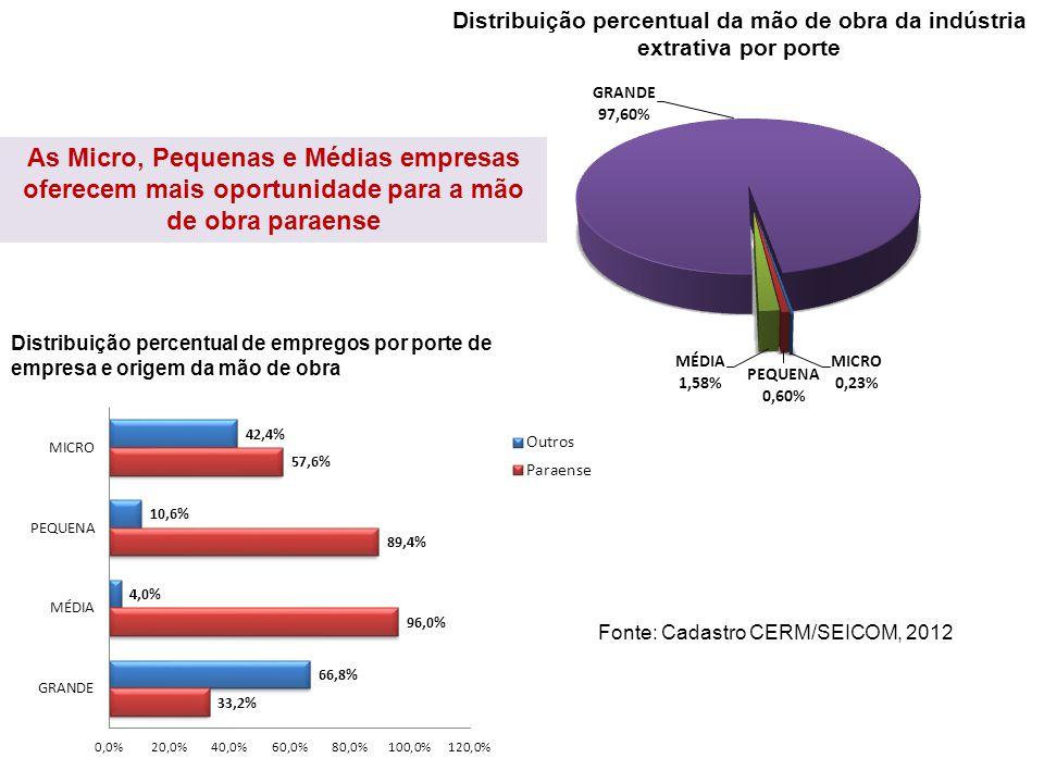 Distribuição percentual da mão de obra da indústria extrativa por porte