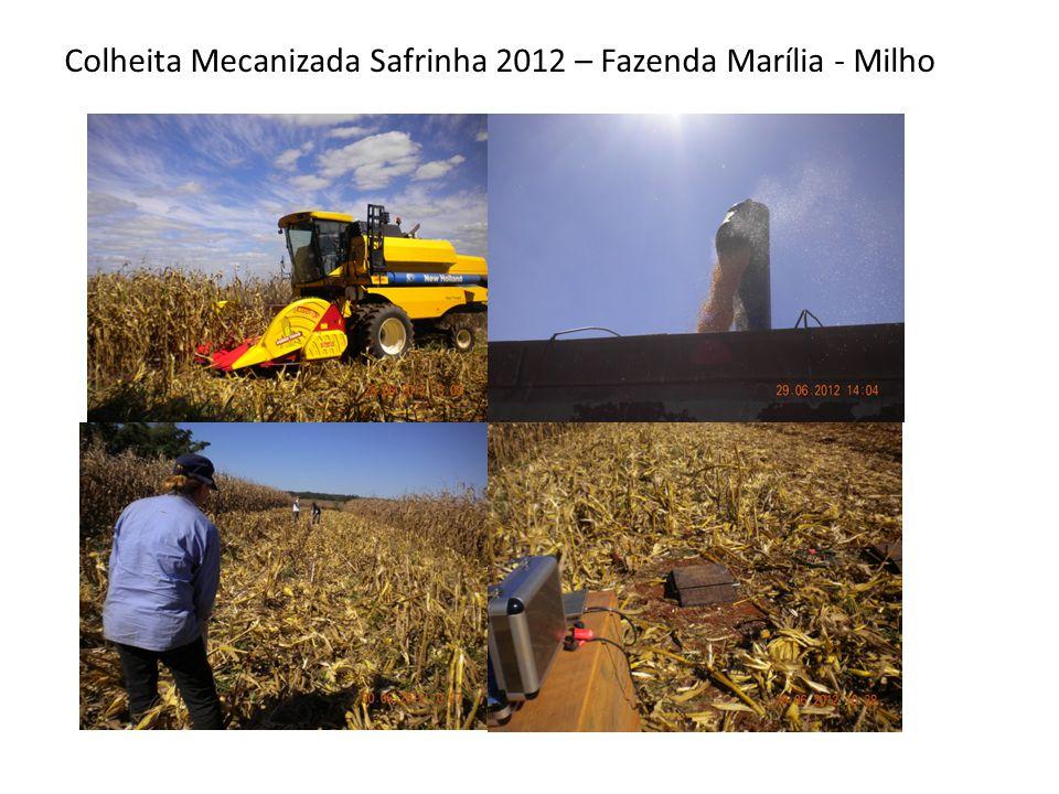 Colheita Mecanizada Safrinha 2012 – Fazenda Marília - Milho
