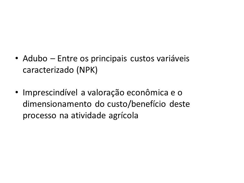 Adubo – Entre os principais custos variáveis caracterizado (NPK)