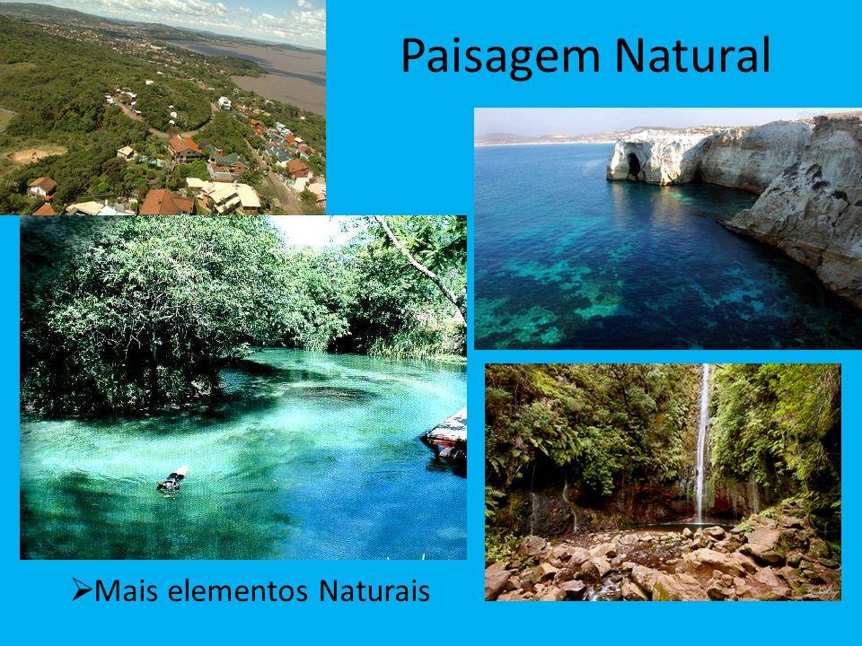 Paisagem Natural Mais elementos Naturais