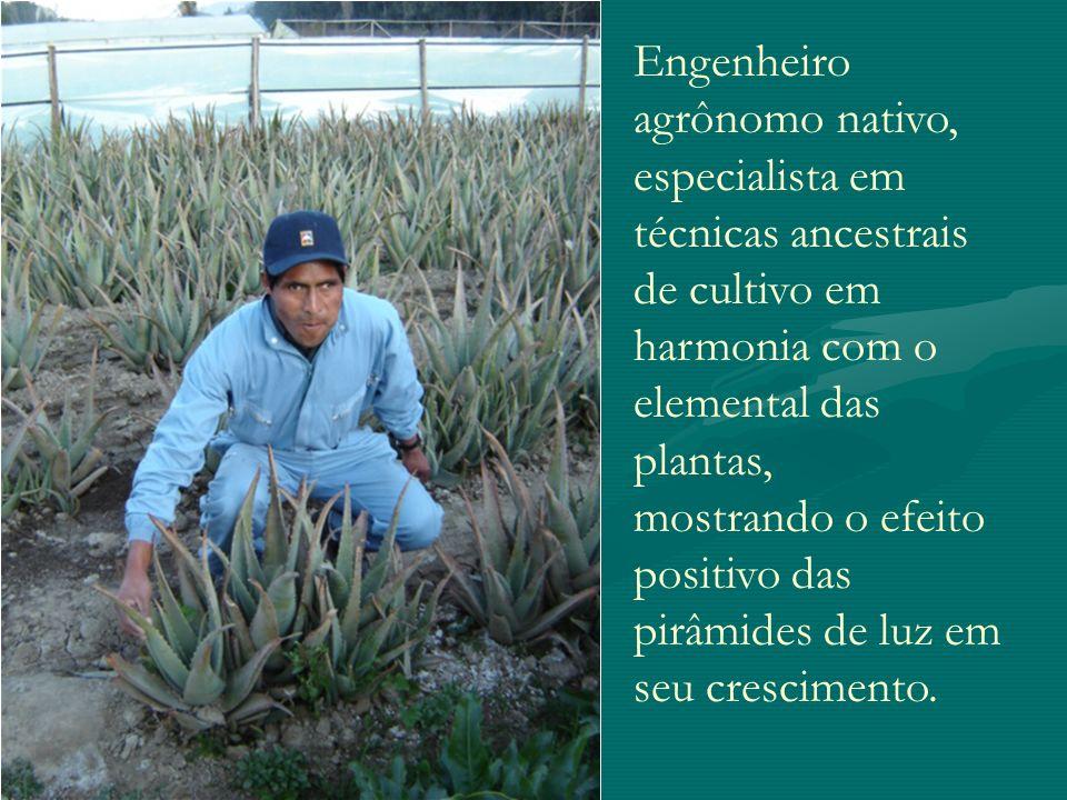 Engenheiro agrônomo nativo, especialista em técnicas ancestrais de cultivo em harmonia com o elemental das plantas,