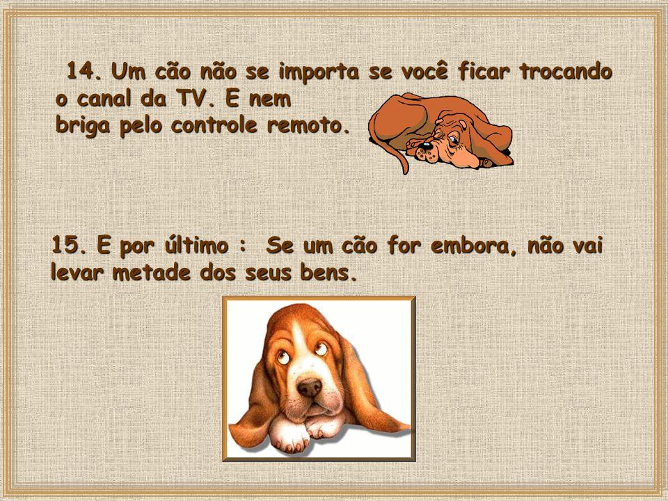 14. Um cão não se importa se você ficar trocando o canal da TV