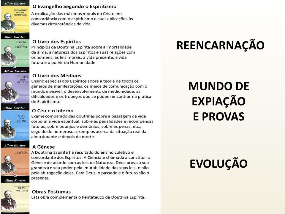 REENCARNAÇÃO MUNDO DE EXPIAÇÃO E PROVAS EVOLUÇÃO
