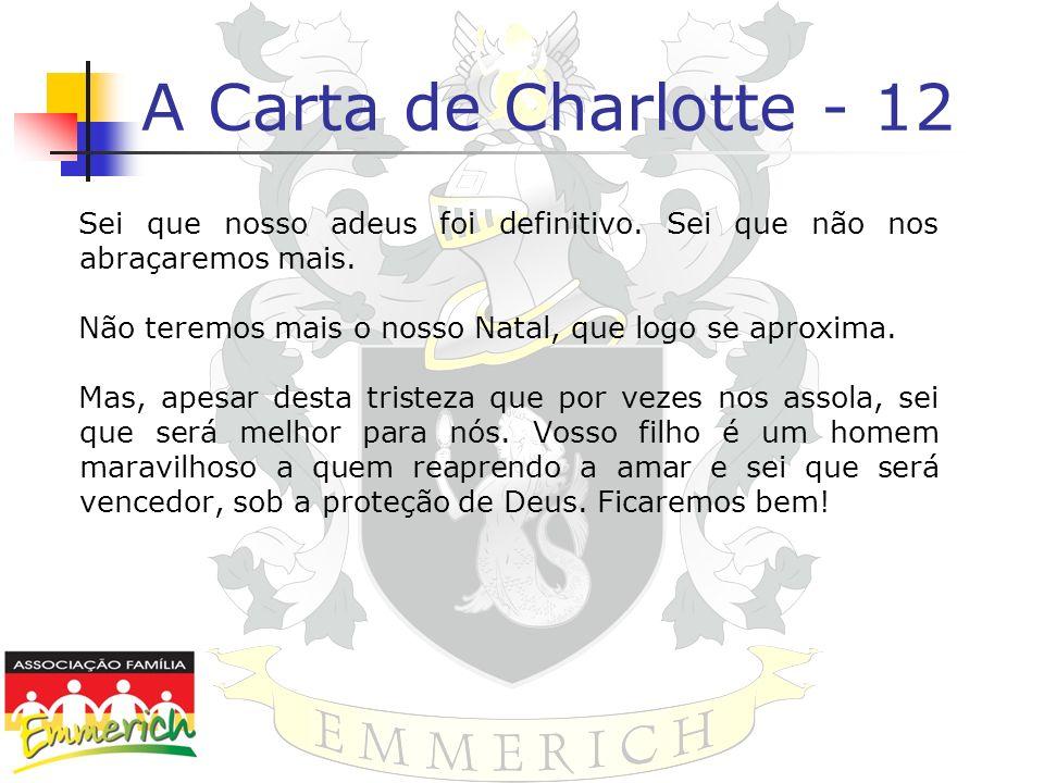 A Carta de Charlotte - 12Sei que nosso adeus foi definitivo. Sei que não nos abraçaremos mais. Não teremos mais o nosso Natal, que logo se aproxima.